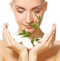 Seeking Alternative Medicine for Health and Wellness